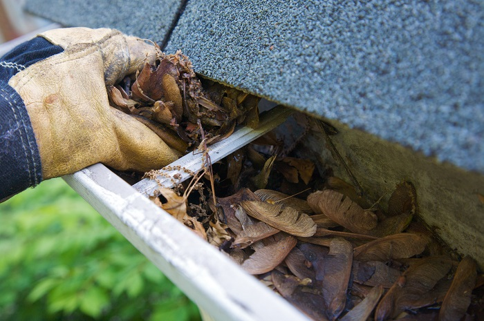 Cleaning & Maintaining Gutters